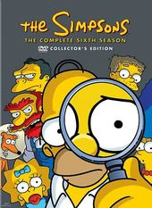 The Simpsons - Complete Season 6 (2-DVD)