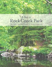 A Year in Rock Creek Park: The Wild, Wooded Heart