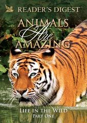 Animals Are Amazing: Life in the Wild: Part One
