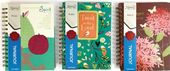 Markings - Spiritual - Journal (Bundle of 3)