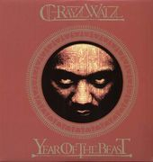 Year of The Beast (2-LPs)