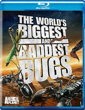 The World's Biggest and Baddest Bugs (Blu-ray,