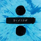 Divide (2LPs @45RPM - 180GV)