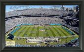 Football - Carolina Panthers Signature Gridiron