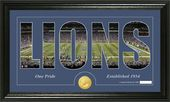 "Football - Detroit Lions ""Silhouette"" Bronze Coin"
