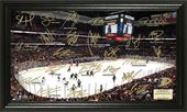 Hockey - Anaheim Ducks Signature Rink