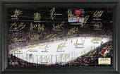 Hockey - Arizona Coyotes Signature Rink