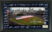 Baseball - Detroit Tigers 2016 Signature Field