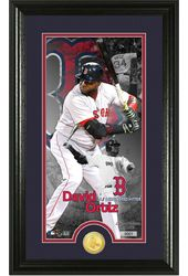 Baseball - David Ortiz Supreme Bronze Coin Photo