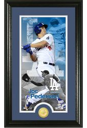 Baseball - Joc Pederson Supreme Bronze Coin Photo