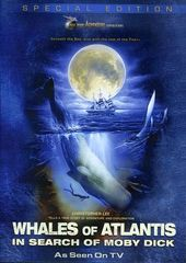 Jules Verne Adventure Expeditions - Whales of