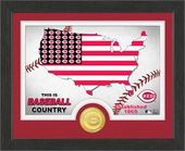 "Baseball - MLB - Cincinnati Reds ""Country"" Bronze"