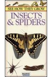 See How They Grow: Insects & Spiders