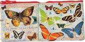 Pencil Case - Butterfly Society