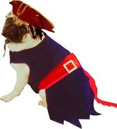 Disney - Jack Sparrow - Dog Costume