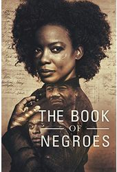 The Book of Negroes (3-DVD)
