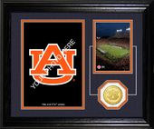 Football - Auburn University Tigers - Fan
