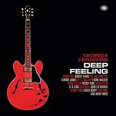 Deep Feeling: 75 Masterpieces by 31 Blues Guitar