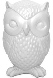 Owl - Money Bank