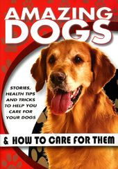 Dogs - Amazing Dogs & How to Care for Them