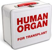 Human Transplant - Lunch Box