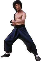 Bruce Lee - Fighting Stance Magnet