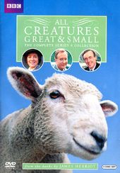 All Creatures Great & Small - Complete Series 6