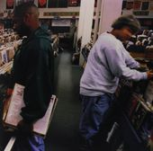 Endtroducing (2-LPs)