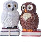 Book Owls - Magnetized Ceramic Salt & Pepper
