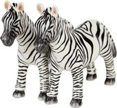Zebra - Salt and Pepper