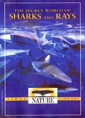 Nature - The Secret World of Sharks and Rays