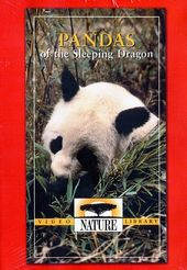 Nature - Pandas of the Sleeping Dragon