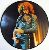 His 12 Greatest Hits Picture Disc