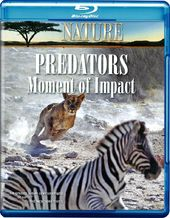 Nature - Predators: Moment of Impact (Blu-ray)
