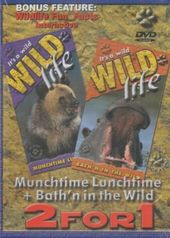 It's A Wild Wild Life: Munchtime Lunchtime +
