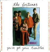 You've Got Your Troubles [Import]