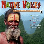 Native Voices: The Ultimate Ambient Dance Hits,