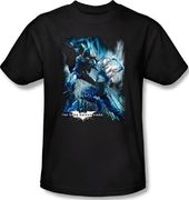 DC Comics - Batman - Dark Knight Rises for a
