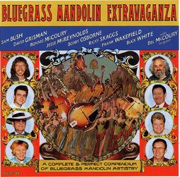 Bluegrass Mandolin Extravaganza (2-CD)