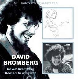 David Bromberg / Demon In Disguise