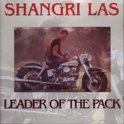 Leader Of The Pack (Import)