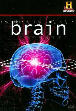 The History Channel: The Brain