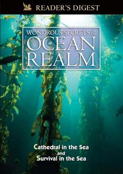 Wondrous Secrets of the Ocean Realm: Cathedral in