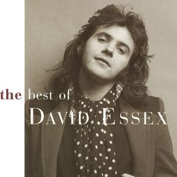 The Best of David Essex