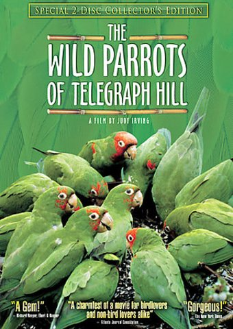 Wild Parrots of Telegraph Hill (2-DVD,