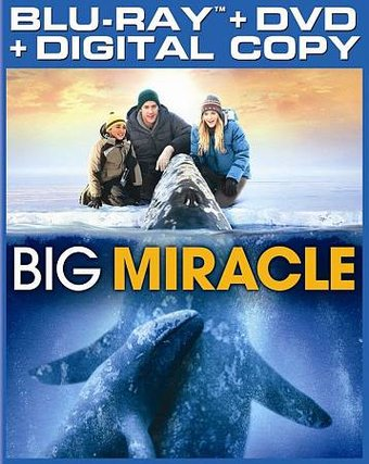 Big Miracle (Blu-ray + DVD)