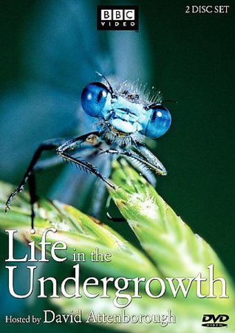 BBC - Life in the Undergrowth (2-DVD)