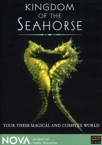 Kingdom of the Seahorse