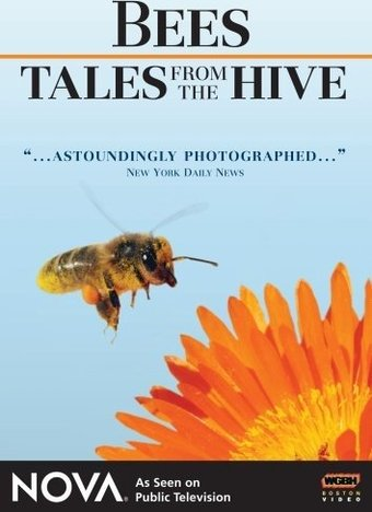 Nova - Bees - Tales From the Hive