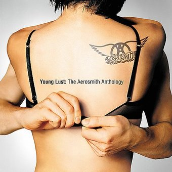 Young Lust: The Aerosmith Anthology (2-CD)